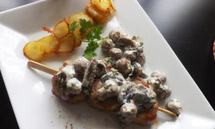 Filet mignon kebab and mushrooms sauce