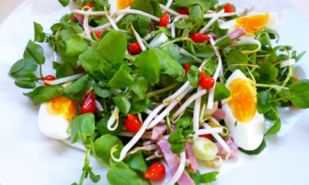 Thaï salad with red pepper drops